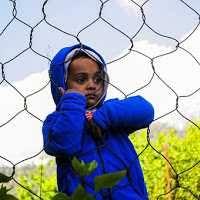 Pola Asuh Laissez Faire, Memberikan Kebebasan Tanpa Batas Pada Anak